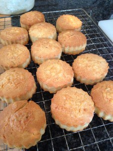 Gluten Free Cheesy as you like Scones!