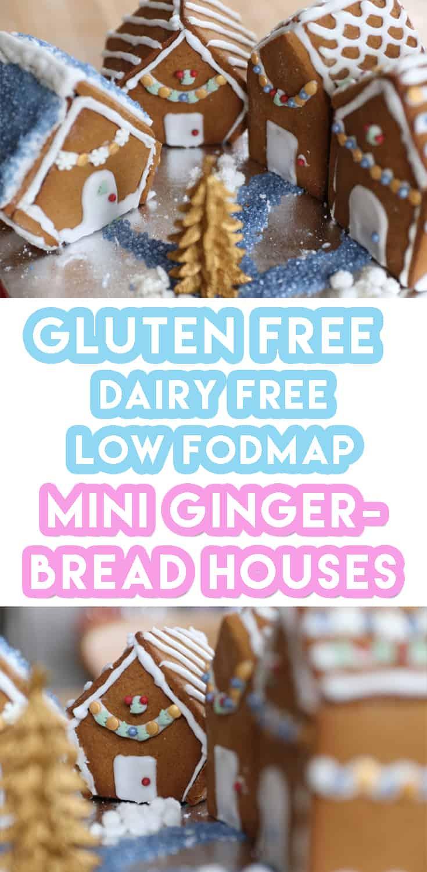 Gluten Free Gingerbread Houses Recipe (dairy free & low FODMAP)