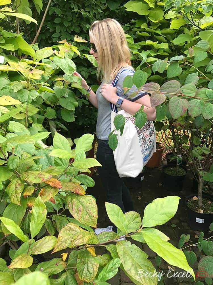 perrywood garden centre gluten free